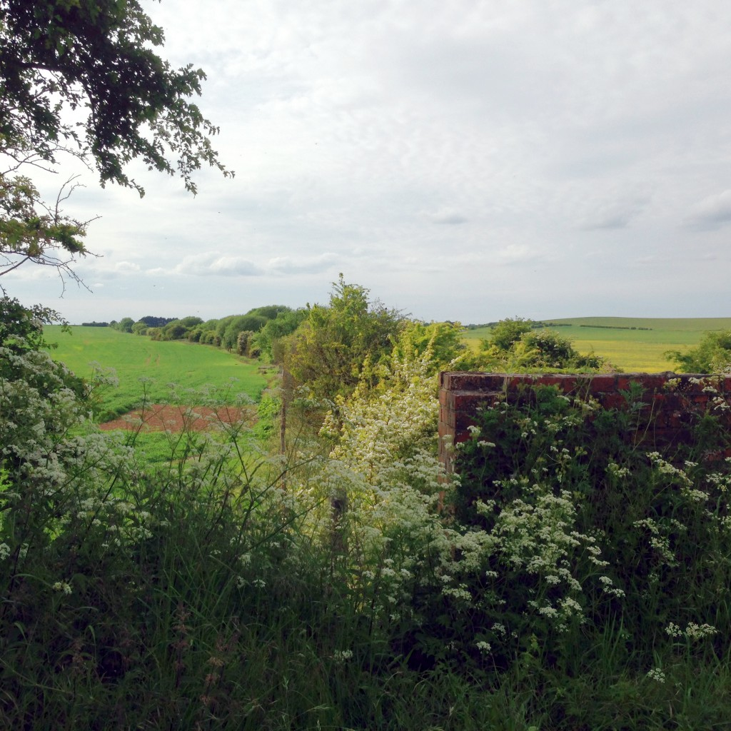 Site of Churn Station from the Ridgeway, 2015